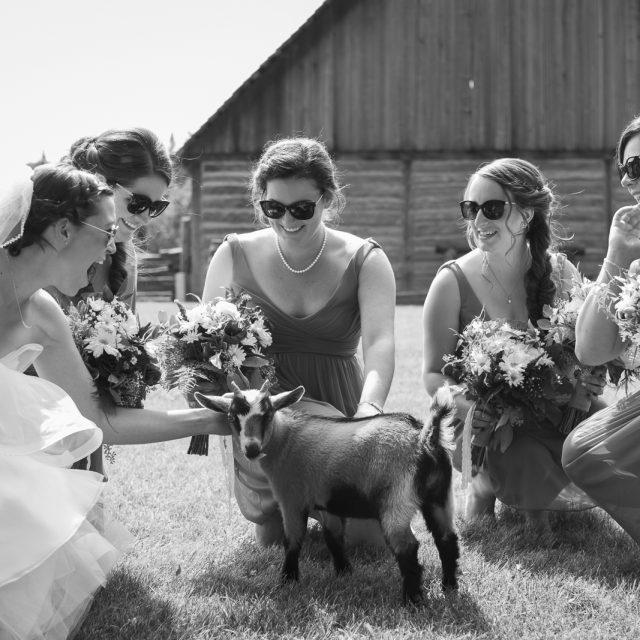 Shannon&Kyle_Wedding_Photography_DanGarrityMedia_18