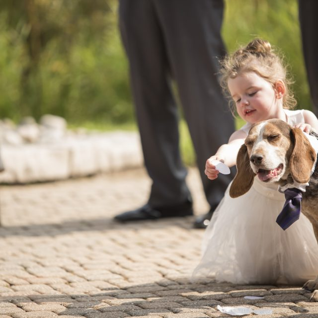 Shannon&Kyle_Wedding_Photography_DanGarrityMedia_59
